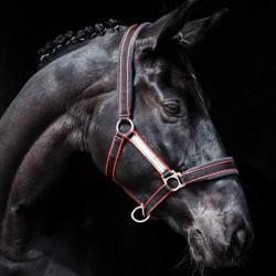 LICOL RAMBO GP HORSEWARE