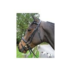 BRIDON 500 HORSE IN