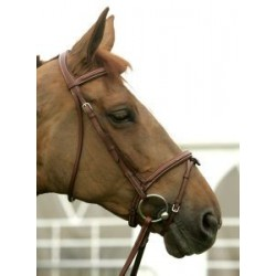 500 HORSE IN SNAFFLE BRIDLE