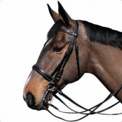 LEXINGTON MICHIGAN BRIDLE FROM PRIVILEGE EQUITATION