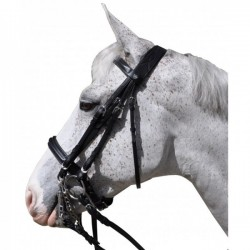 FLAGS&CUP HAGEN BRIDLE FROM PRIVILEGE EQUITATION