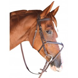NOSEBAND LA BAULE SNAFFLE BRIDLE FROM PRIVILEGE EQUITATION