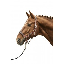 LEATHER HEAD COLLAR SOFT